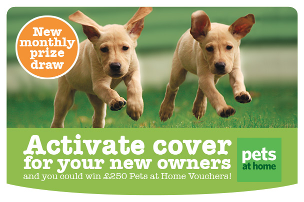 Win £250 Pets At Home Vouchers